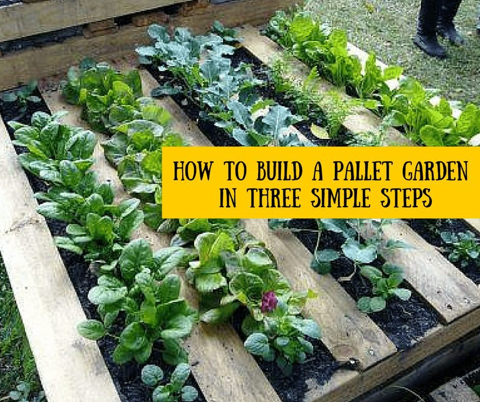 How To Build A Pallet Garden In Three Simple Steps » HG