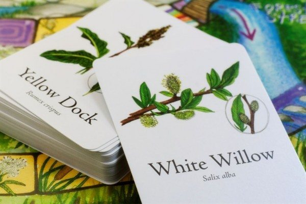 wild-craft-board-game-1