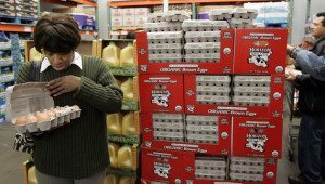 A shopper checks out organic brown eggs at Costco in Mountain View, Calif., Sunday, Feb. 22, 2009. Consumer spending rose in January after falling for a record six straight months, pushed higher by purchases of food and other nondurable items. (AP Photo/Paul Sakuma)