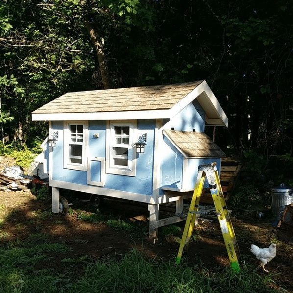 cutest chicken house you have ever seen 11
