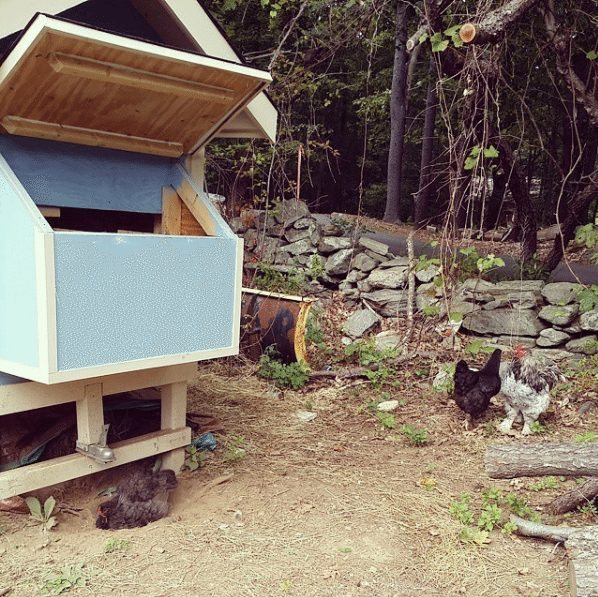 cutest chicken house you have ever seen 8
