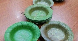 leaf dinnerware
