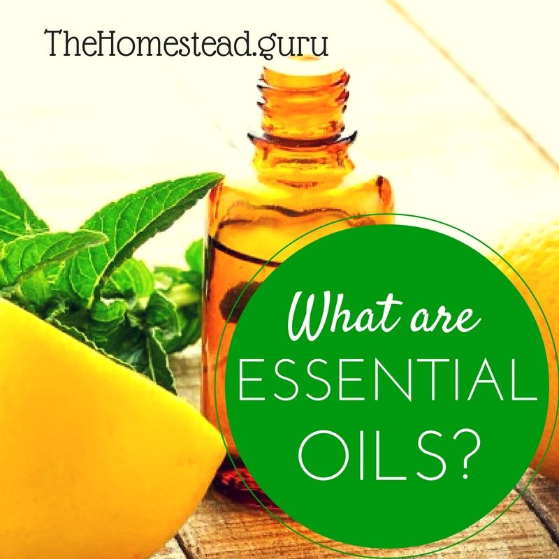 what-are-essential-oils-1