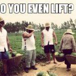 homestead hit the gym