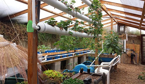 Do It Yourself Home Design: Grow Food Year Round In A $300 Underground Greenhouse