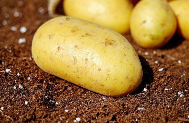 potatoes-1585057_640