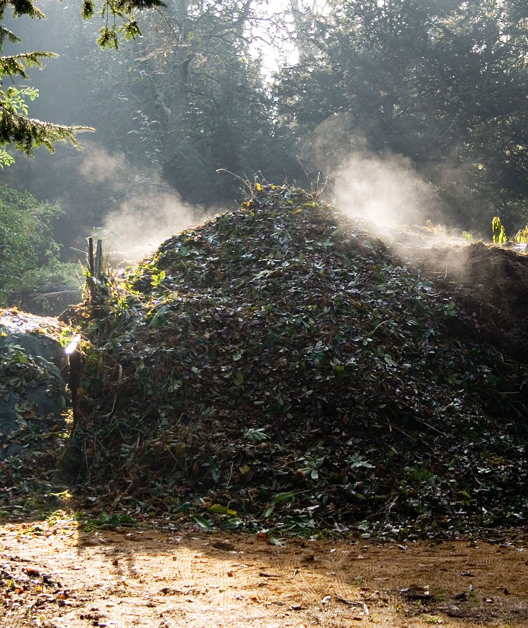 biochar terra preta compost bokashi