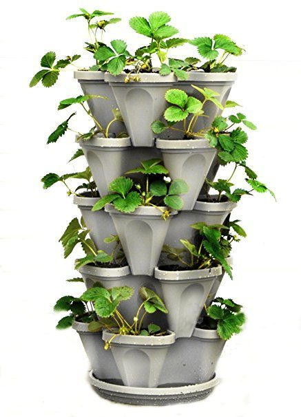 vertical hydroponics system