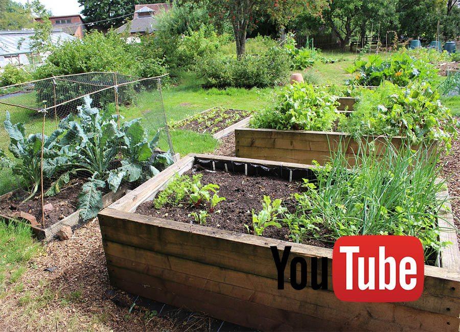 Five Reasons to Get Naked in Your Garden » Homestead Guru