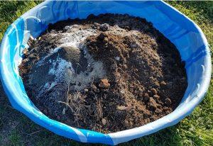 soil mix low-water garden texas