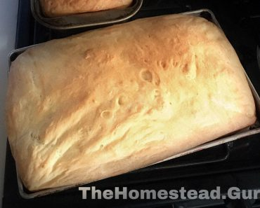 organic bread you can make at home