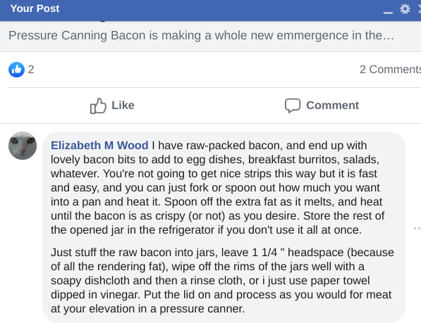 how to can bacon