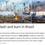 slash and burn brazil