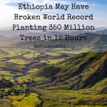 Ethiopia May Have Broken World Record Planting 350 Million Trees in 12 Hours